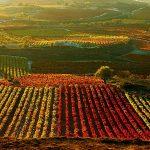 Izki Golf Club Urturi Alava Rioja Alavesa, vitoria-gasteiz